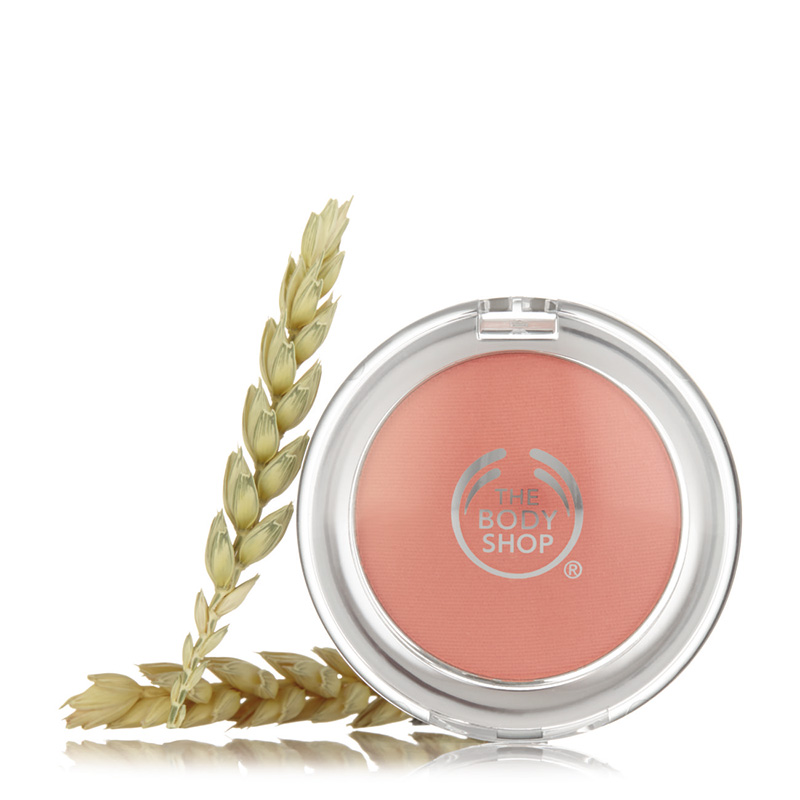 all in one blush 01 4g 01
