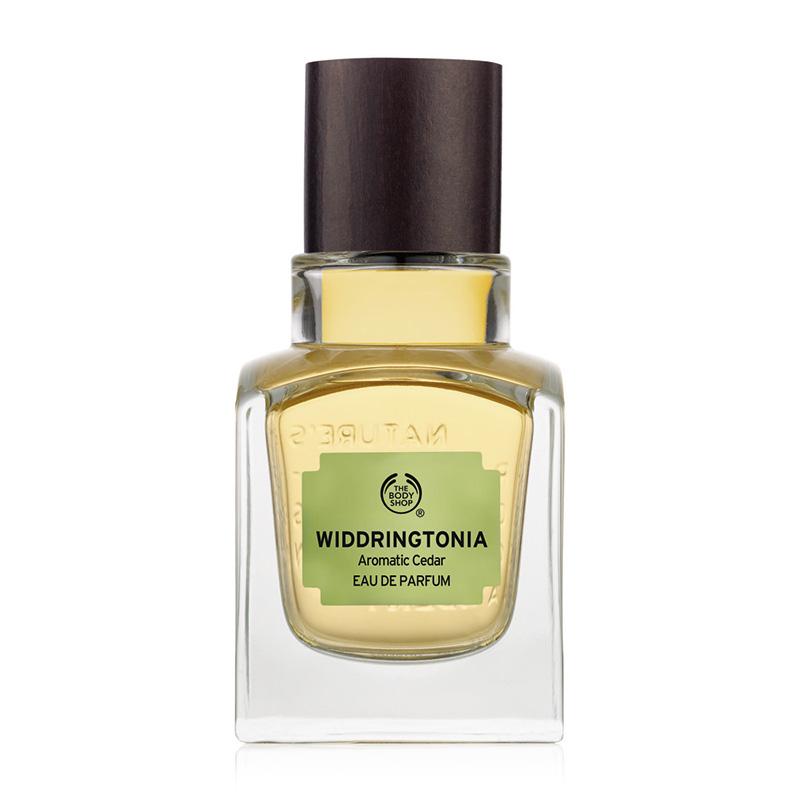 widdringtonia eau de parfum 50ml bronze 01